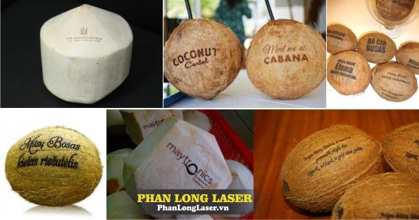 Điêu khắc nghệ thuật laser lên trái dừa, quả dừa tại Sài Gòn
