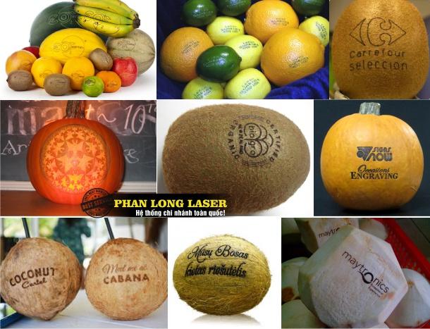 Khắc hoa văn, khắc chữ khắc hình ảnh lên trái táo, quả cam, quả chanh, quả bí đao tại Đà Nẵng